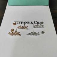 ティファニー ピアス 新作 おしゃれをシンプルに楽しめるアイテム コピー Tiffany & Co ゴールド シルバー ストリート 安価